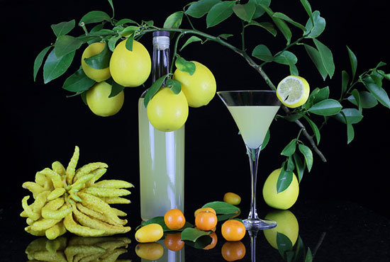 成都新东方――金桔柠檬